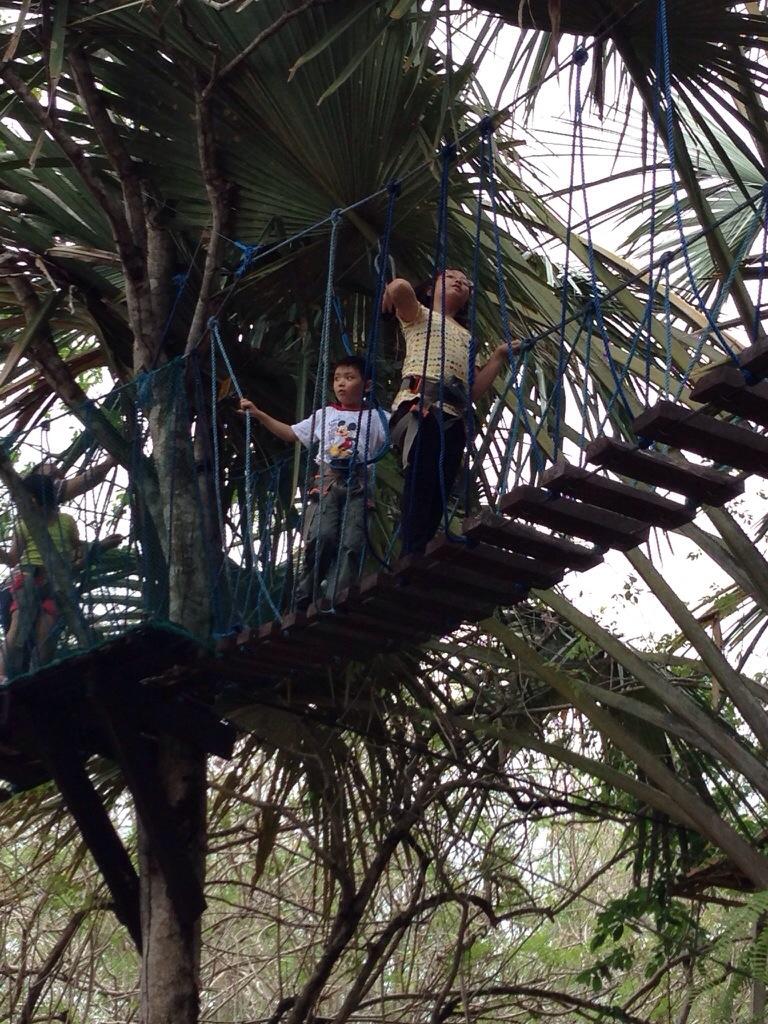Hanging Bridge at Papa Kits